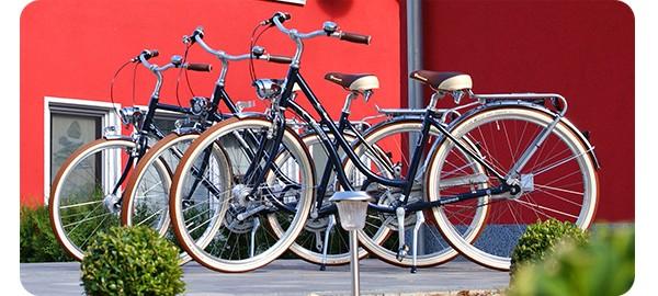 fahrradverleih-fahrradvermietung-senftenberger-see